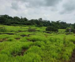 200 Acre Land for sale in Mahad Raigad - Image 1