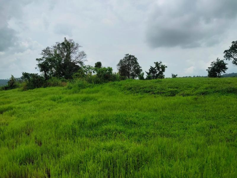 200 Acre Land for sale in Mahad Raigad - 2