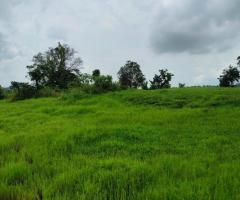 200 Acre Land for sale in Mahad Raigad - Image 2
