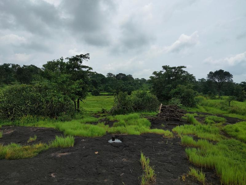 200 Acre Land for sale in Mahad Raigad - 3