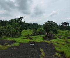 200 Acre Land for sale in Mahad Raigad - Image 3