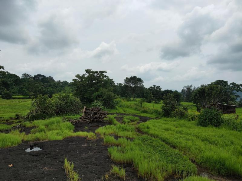 200 Acre Land for sale in Mahad Raigad - 4