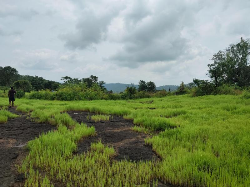 200 Acre Land for sale in Mahad Raigad - 5