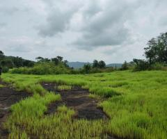 200 Acre Land for sale in Mahad Raigad - Image 5