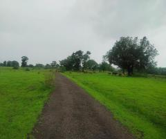 500 Acres land for sale in Nagaon Mahad - Image 2