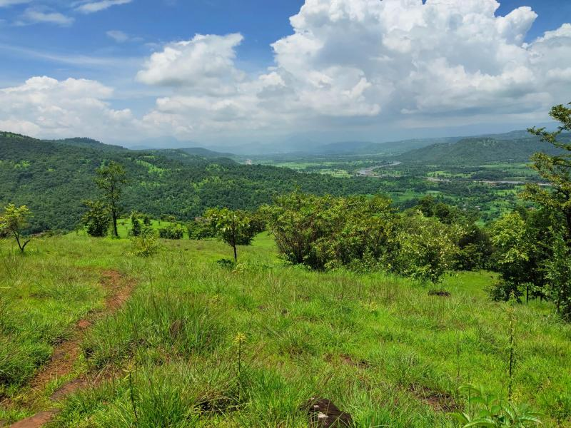 1000 Acres Land for sale in Rupawali Tal Mahad - 1