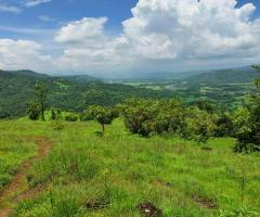 1000 Acres Land for sale in Rupawali Tal Mahad - Image 1