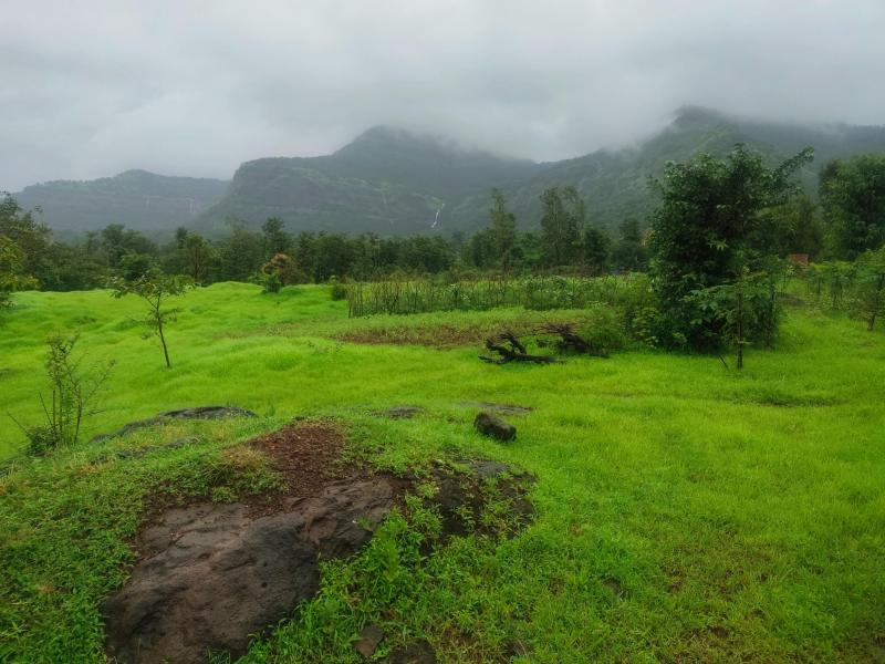 1000 Acres Land for sale in Rupawali Tal Mahad - 2