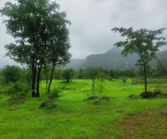1000 Acres Land for sale in Rupawali Tal Mahad - Image 5